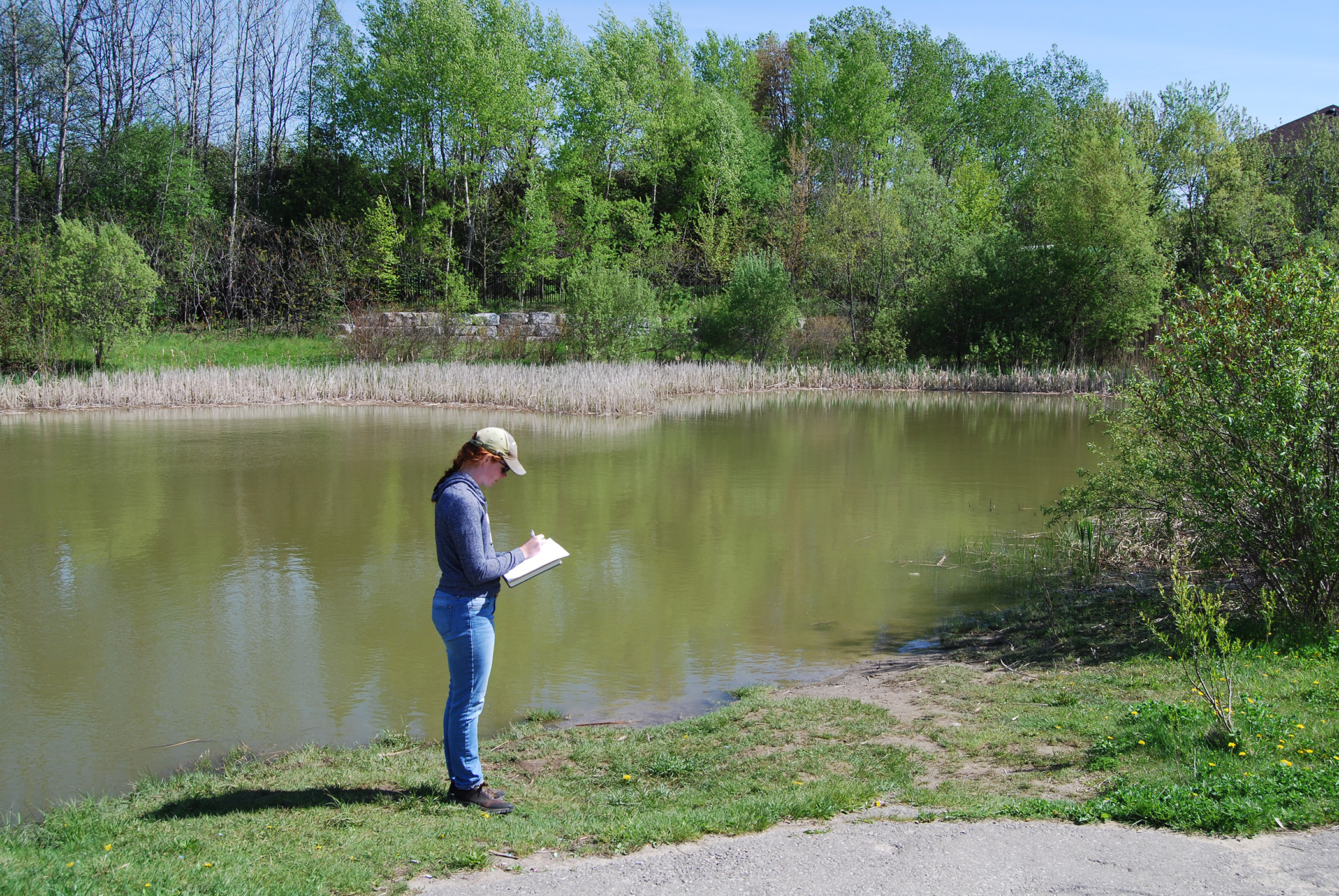 Master's student Alex conducts field research in an Oshawa stormwater management pond.